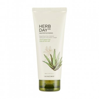 HerbDay 365 Master Blending Foaming Cleanser Aloe & Green tea